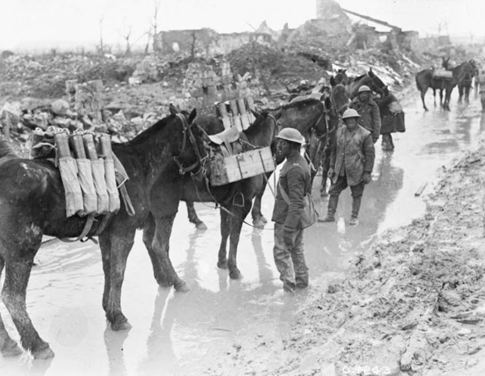 Pack horses taking shells to Canadian guns near Vimy Ridge, Apr. 1917 (LAC M#3194797).