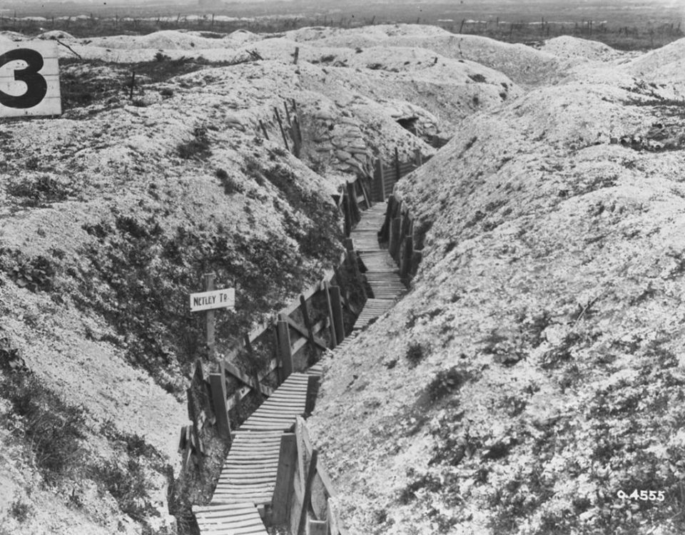 Netley Trench, 1919 (LAC M#3395619).